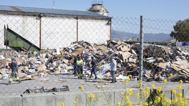 El cadáver ha sido hallado este miércoles en una planta de reciclaje de Granada.