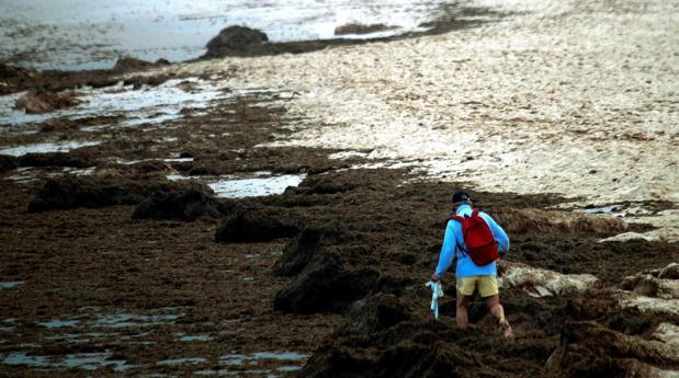 Aspecto de la playa de Los Lances en Tarifa en una imagen del pasado 15 de julio.