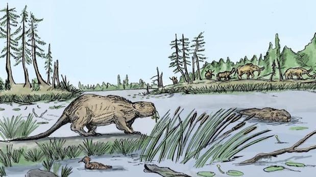 El castor gigante, ahora extinto
