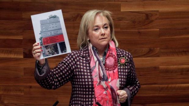 La presidenta del PP de Asturias, Mercedes Fernández