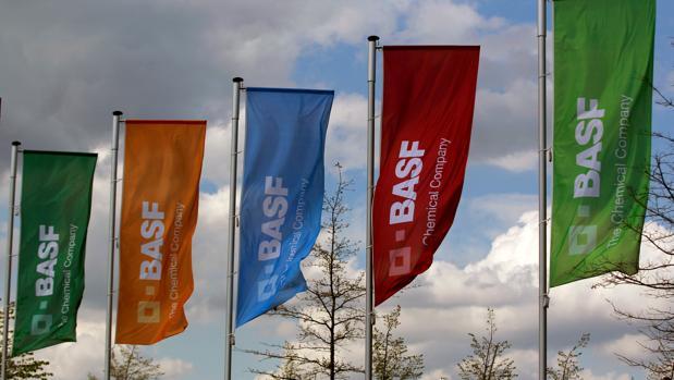 El presidente de la Junta Directiva de Basf Martin Brudermüller «ha completado la adquisición de importantes negocios y activos de Bayer