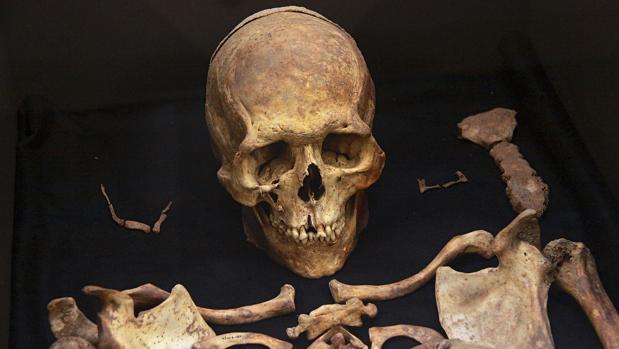 Restos óseos en una imagen de archivo