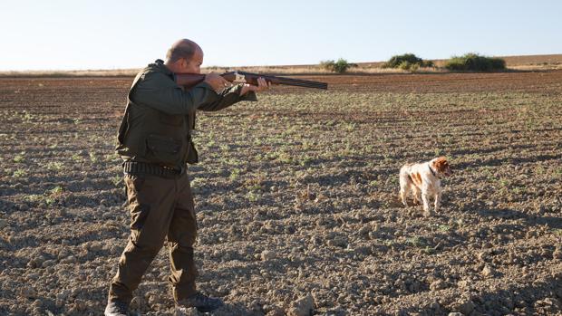 Un cazador en el comienzo de la media veda en Castilla y León