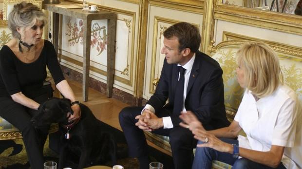 Brigitte Bardot, con el matrimonio Macron en el Palacio del Elíseo, en una imagen de archivo