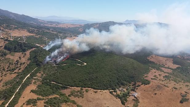 Imagen del Infoca actuando en extinguir el incendio forestal en La Hoya