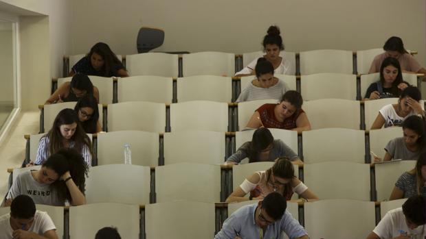 Los estudiantes gaditanos están teniendo más oportunidades en la búsqueda de empleo.