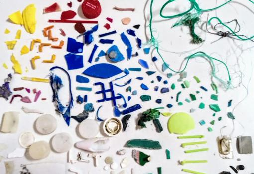 A través de una aplicación con inteligencia artificial es posible clasificar la basura marina.